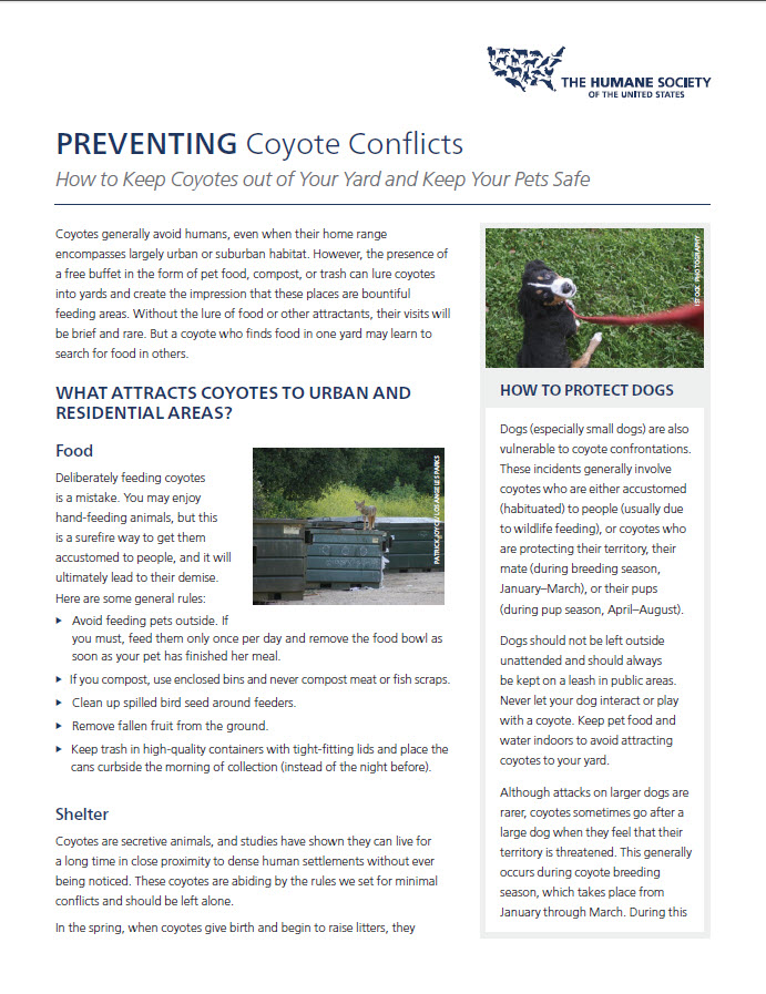 Preventing Coyote Conflicts