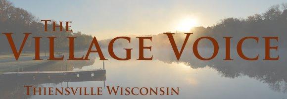 Village Voice Banner