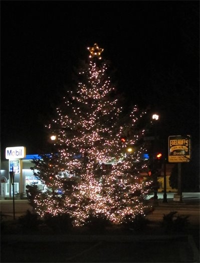 Thiensville Christmas Tree